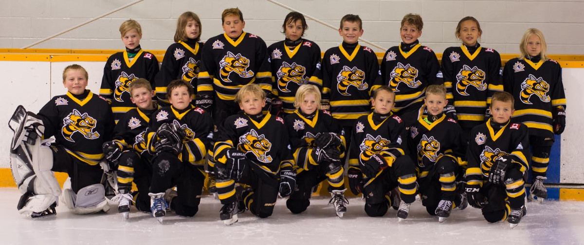Minor_Novice_Team.jpg